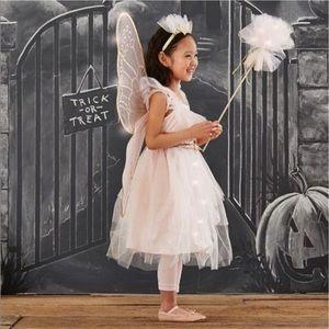 PotteryBarn Kids Fairy Princess Costume
